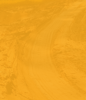 Perma-Zyme BKG Header_V02_Left Orange@3x
