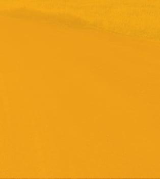 Perma-Zyme BKG Header_V02_Right Orange@3x