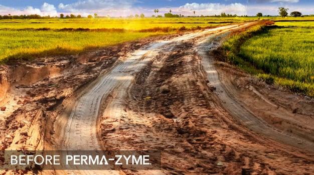 Perma-Zyme BKG Header_V03_Muddy Road@3x