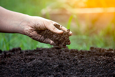soil_conditioning_hand